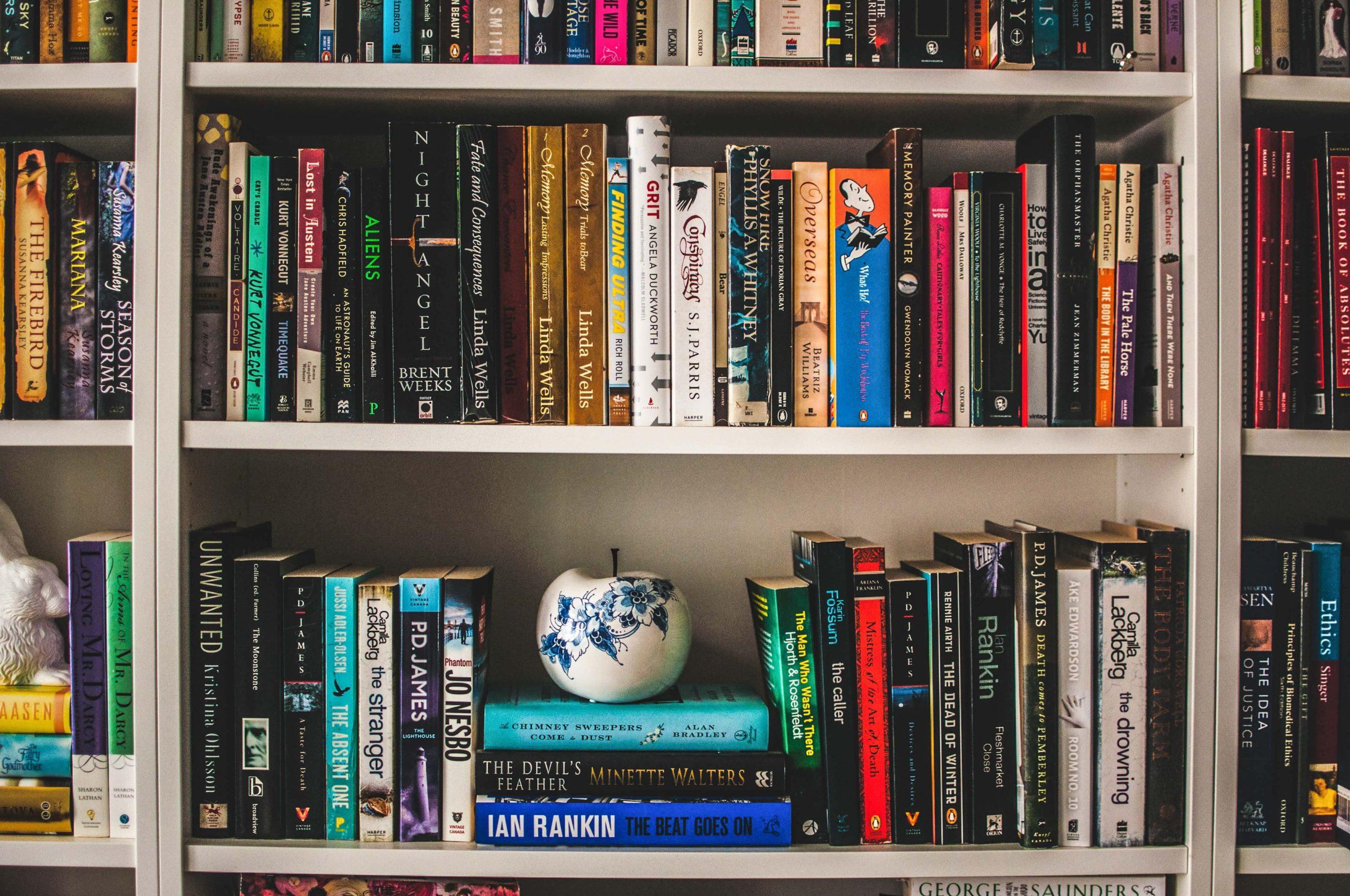 【ミニマリストの本棚】本の断捨離のコツと美しく魅せる極意